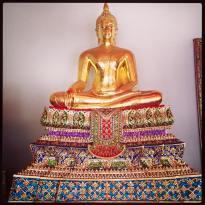 thai 31